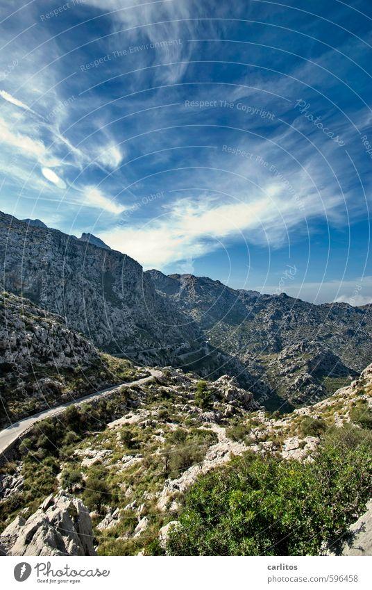 Erstes 2014 | Beste Aussichten Umwelt Natur Landschaft Erde Luft Himmel Sonnenlicht Sommer Schönes Wetter Wärme Pflanze Baum Sträucher Felsen Berge u. Gebirge
