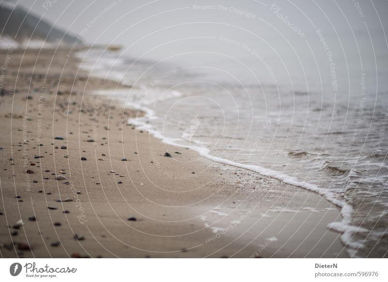 Leere Strand Meer Winter Landschaft Sand Wasser Wolken Horizont Küste Ostsee Stein braun weiß Mecklenburg-Vorpommern Farbfoto Außenaufnahme Menschenleer