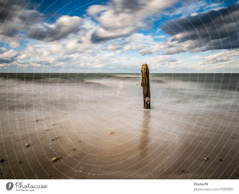 Einzelgänger Himmel blau weiß Wasser Meer Landschaft Wolken Strand schwarz Herbst Küste Stein Sand braun Horizont Wellen