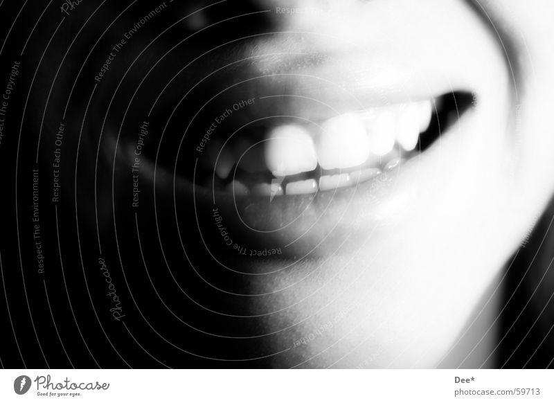 Lachen Lippen Frau Kinn schwarz weiß Zufriedenheit Humor schön zart weich Zahnarzt Sympathie Zuneigung lachen Mund Gesicht Mensch Haut Nase Schwarzweißfoto