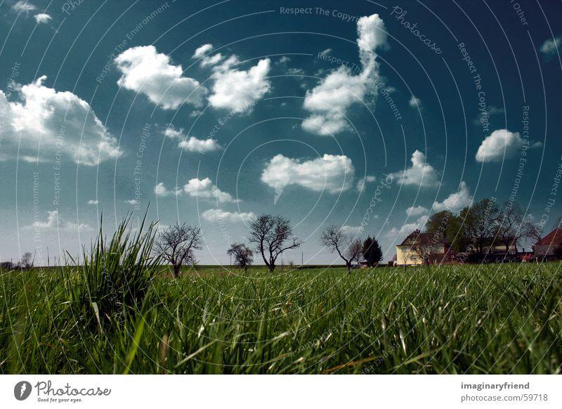 haus bäume gras Himmel Baum Haus Wolken Wiese Gras Landschaft Feld Länder