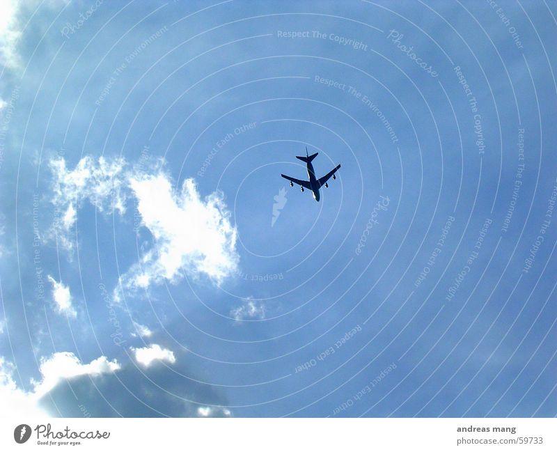Flying High Flugzeug Wolken Abdeckung Himmel Ferne Luftverkehr fliegen Düsenflugzeug blau aeroplane flying flight sky far distance
