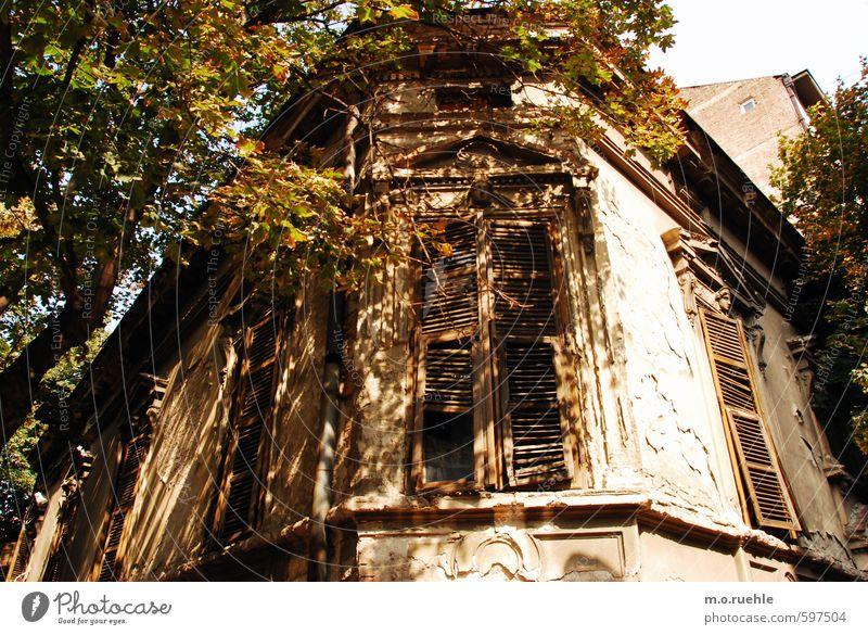 belgrade I remember Ferien & Urlaub & Reisen alt Sommer Baum Landschaft Haus Fenster Architektur Stimmung Fassade Lifestyle Tourismus authentisch Schönes Wetter