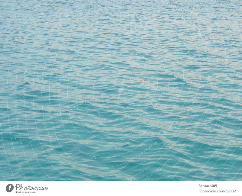 el mare Wasser Meer blau Ferien & Urlaub & Reisen Freiheit Wellen nass Unendlichkeit tief himmelblau hell-blau