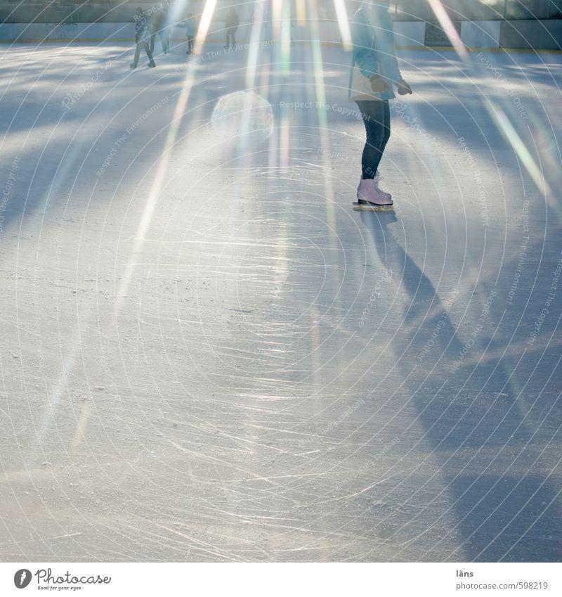 Eislauf Sport Mensch Leben Winter Schönes Wetter Frost Linie Bewegung glänzend laufen Lebensfreude Liebe Zufriedenheit kalt Leichtigkeit Leistung