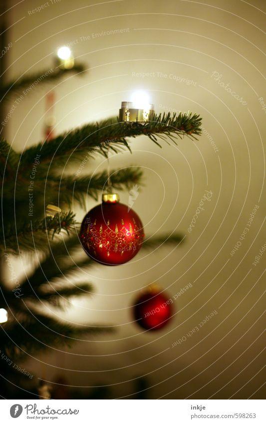 mir doch egal Lifestyle Stil Freizeit & Hobby Häusliches Leben Dekoration & Verzierung Feste & Feiern Weihnachten & Advent Kerze Weihnachtsbaum Christbaumkugel