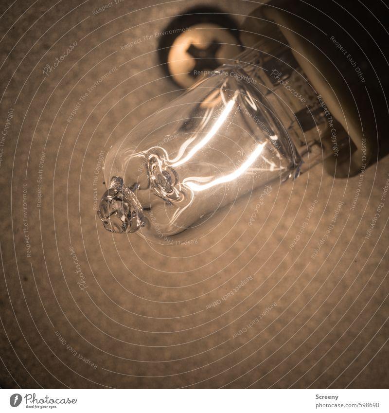 Heißer Draht Umwelt Wärme klein hell Energiewirtschaft Glas Energie heiß Reichtum Glühbirne Wissen Verantwortung achtsam sparsam Energiekrise