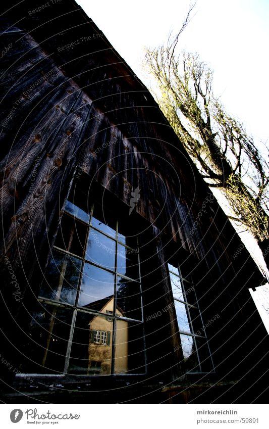 Die alte Scheune Stall Haus Spiegel Fenster Baum Reflexion & Spiegelung dunkel groß Macht Weitwinkel hell Kontrast windows tree hoch canon