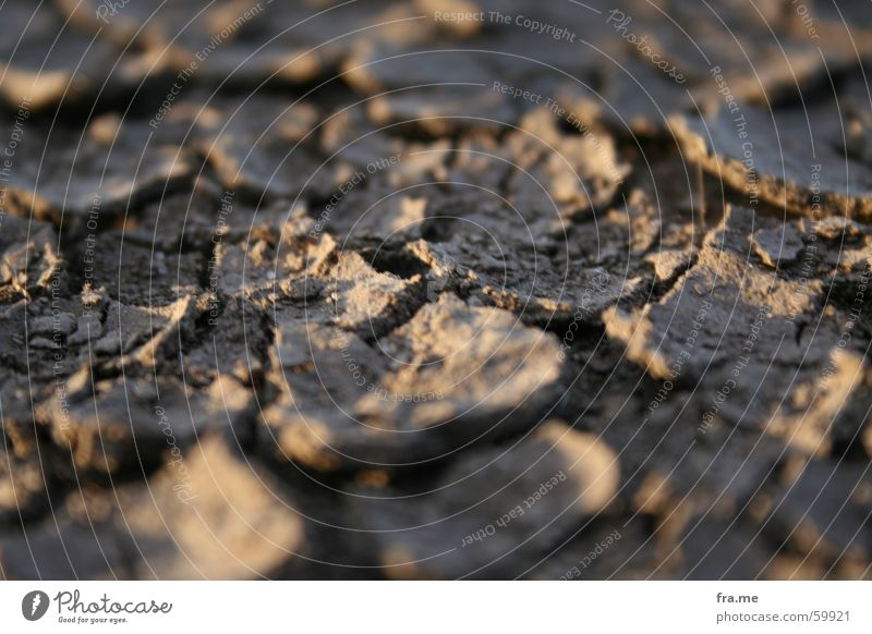 erdkruste dreckig Erde Boden Bodenbelag trocken Maserung Kruste
