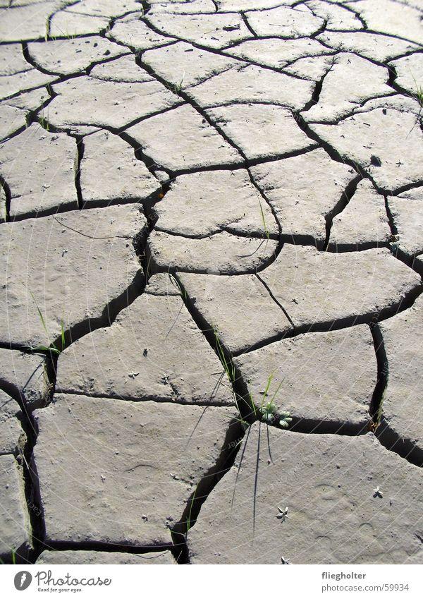 trockenzeit Schlamm Physik Sommer Schweiz Kanton Uri Hoffnung Unwetter Halm Gras Wärme dünn Riss Wüste Wasser Überschwemmung Strukturen & Formen