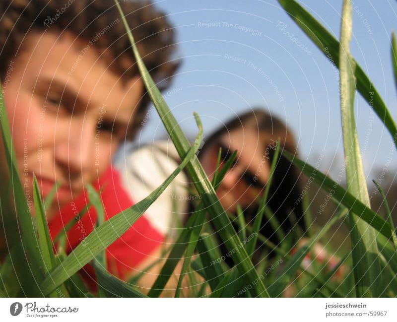 Grasgeflüster Sonne Wiese Frühling Park frei Picknick Weimar