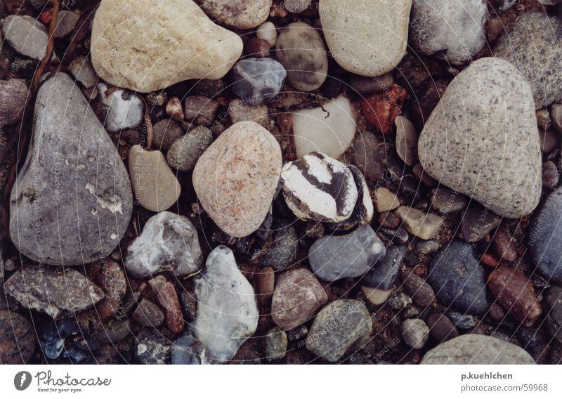 Stones Strand Stein Ostsee