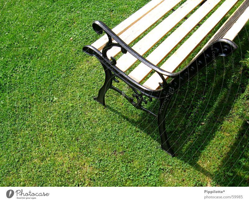 bank im grünen Gras Physik Sommer Stil Bank Rasen Sonne sitzen Wärme Garten Schatten Erholung