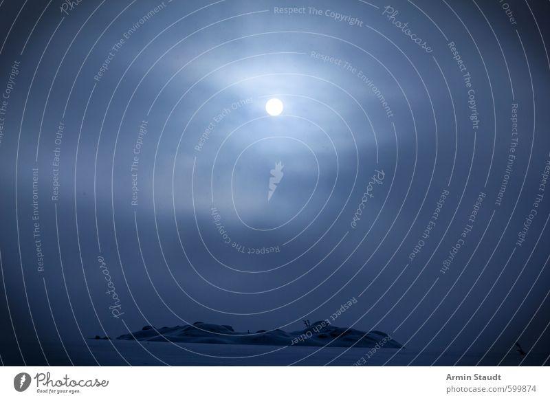 Nebliger Wintermoment Schnee Natur Landschaft Himmel Nachthimmel Sonne Mond schlechtes Wetter Nebel Eis Frost Feld frieren außergewöhnlich gruselig kalt blau