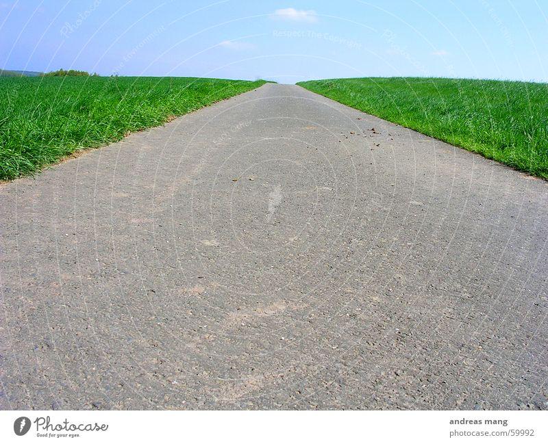 Feldweg Fußweg Gras grün Wiese lang Ferne Himmel Einsamkeit Teer Asphalt Wege & Pfade Straße way field sky road lone lonely