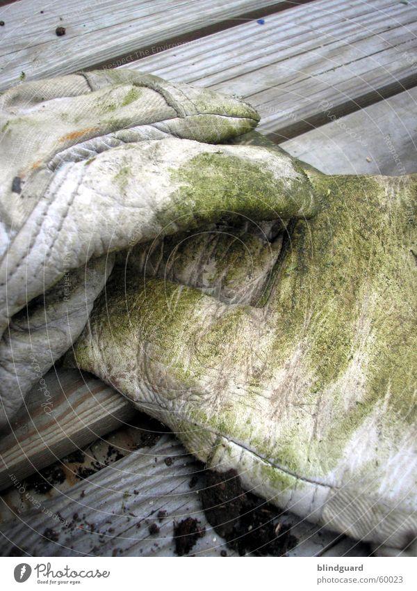 Pause grün Arbeit & Erwerbstätigkeit Gras Garten Holz dreckig Industrie Schutz Dienstleistungsgewerbe Handwerk Leder Handschuhe Gartenarbeit Gärtner Feierabend