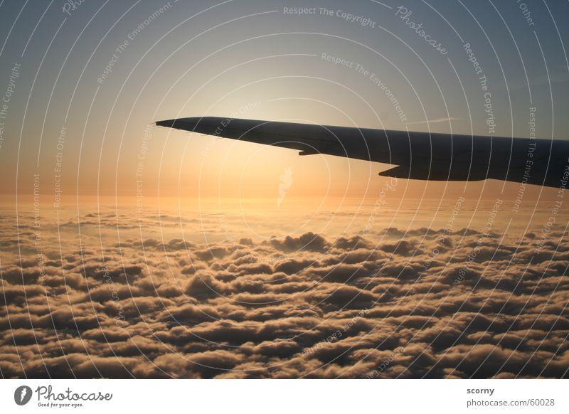 Dawn above the sky... Flugzeug Wolken Sonnenaufgang Fensterplatz wiederkommen Abdeckung Himmel Morgen Tragfläche Flugzeugunglück Fluggerät Passagierflugzeug