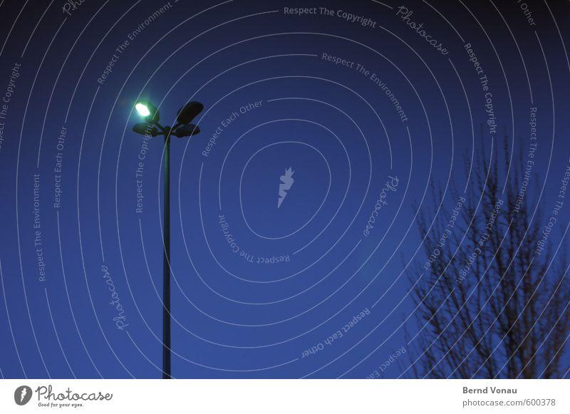 Sparlampe Stadt Stadtzentrum Parkplatz Parkplatzbeleuchtung dunkel blau schwarz weiß Baum Zweige u. Äste Straßenbeleuchtung Laternenpfahl sparen Energie