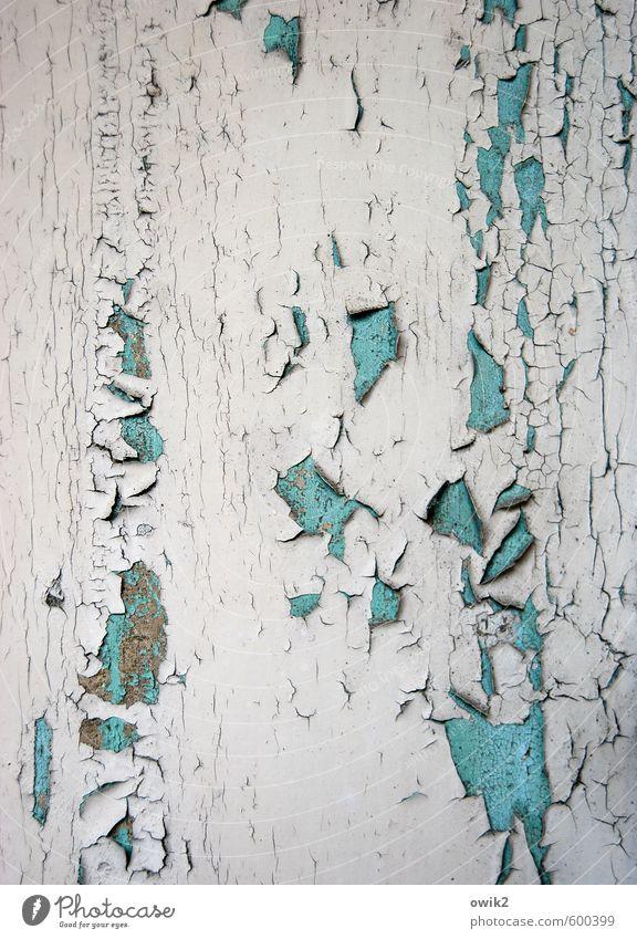 Spätschicht Holz alt eckig einfach historisch kaputt trashig trist trocken verrückt grau schwarz türkis weiß Verfall Vergänglichkeit verlieren Zahn der Zeit