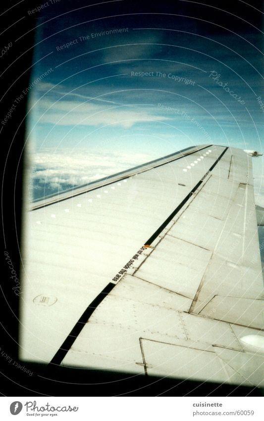 Über den Wolken Flugzeug blau Tragfläche Luft Himmel Freiheit Typographie Ferne Aussicht ruhig Unendlichkeit Fenster Luftverkehr Freude sky