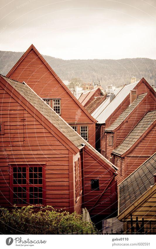 Bryggen Hausbau Dorf Fischerdorf Holz träumen Häusliches Leben alt historisch nachhaltig rot Farbe Idylle Stadt Holzhaus Bergen Bergen-Bryggen Dach Fenster