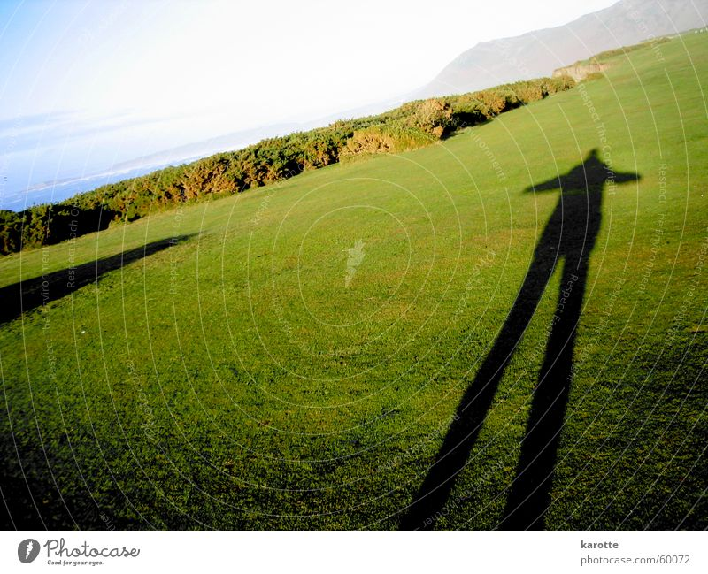 shadow on the grass Gras groß stagnierend standhaft Wales Halbinsel Gower