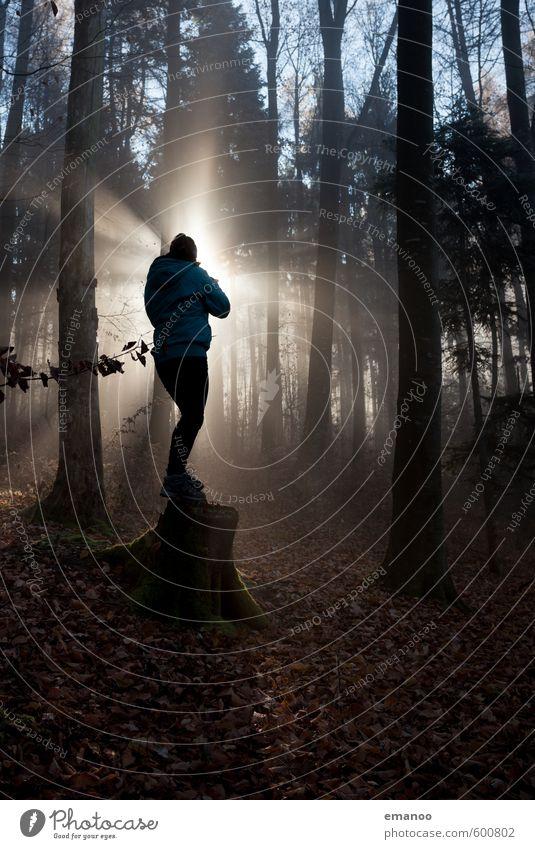 und was fotografierst du so? Mensch Frau Natur Ferien & Urlaub & Reisen Baum Erholung Landschaft Freude kalt Wald Erwachsene Gefühle Herbst Religion & Glaube hell träumen