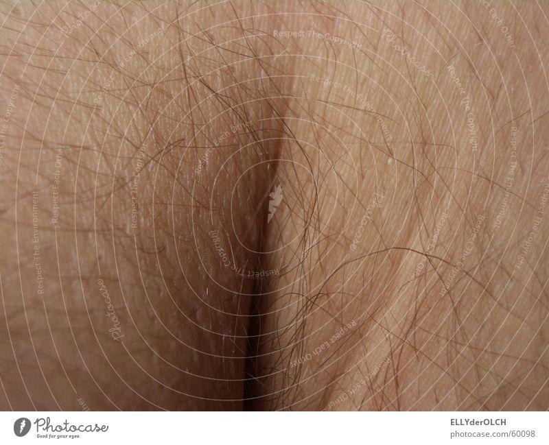 Körperwelten Interpretationssache Kniekehle Wade Makroaufnahme Nahaufnahme Mann Haut Falte Oberschenkel pfui