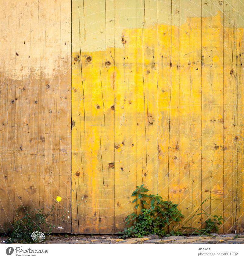 AnWANDlung Anstreicher Sträucher Mauer Wand Holz einfach hell gelb Farbe Holzwand Hintergrundbild Farbfoto Außenaufnahme Strukturen & Formen Menschenleer