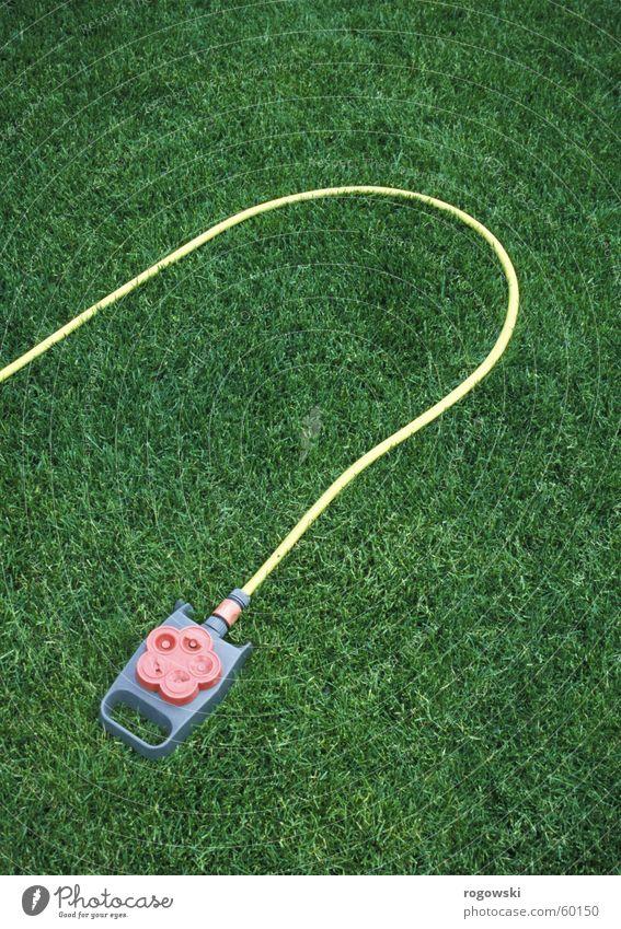 Wasserspiel Wiese Schrebergarten Schlauch grün Rasen wasserspiel