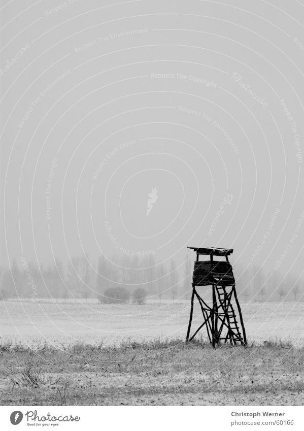 Einsames Feld Winter ruhig Einsamkeit Schnee Wiese Freiheit Traurigkeit Landschaft Feld Trauer Aussicht Verzweiflung Brandenburg Brandenburg an der Havel Kirchmöser
