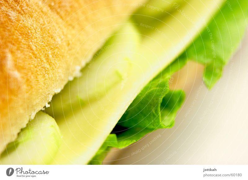 lecker Brot Lebensmittel Käse Gemüse Salat Salatbeilage Brötchen Ernährung Vegetarische Ernährung grün genießen Belegtes Brot belegen Stulle Scheibe Käsebrot