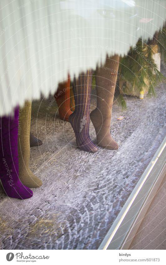 Beinkleider schön feminin Stil Beine Mode Design Erfolg stehen einzigartig kaufen positiv Strumpfhose Schaufenster Schaufensterpuppe