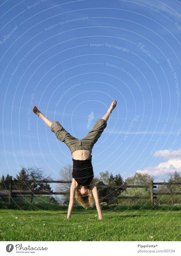 handstand Handstand Wiese Fröhlichkeit Sommer Wolken Zaun Turnen auf dem Kopf Freude Blauer Himmel Sport Mensch frei Freiheit