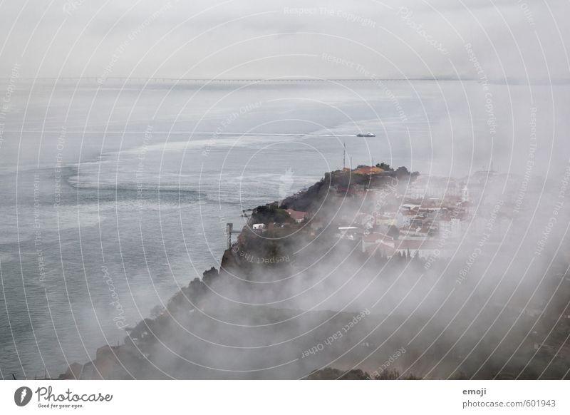 Suppe Umwelt Natur Landschaft Herbst schlechtes Wetter Unwetter Nebel Küste Meer trist grau Farbfoto Gedeckte Farben Außenaufnahme Luftaufnahme Menschenleer Tag