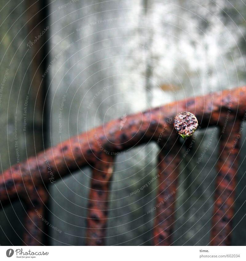 überwintern Nagel Forke Arbeitsplatz Gartenarbeit Gartenhaus Gebäude Scheune Baracke Mauer Wand Holzwand Metall Rost hängen alt fest historisch kaputt rund