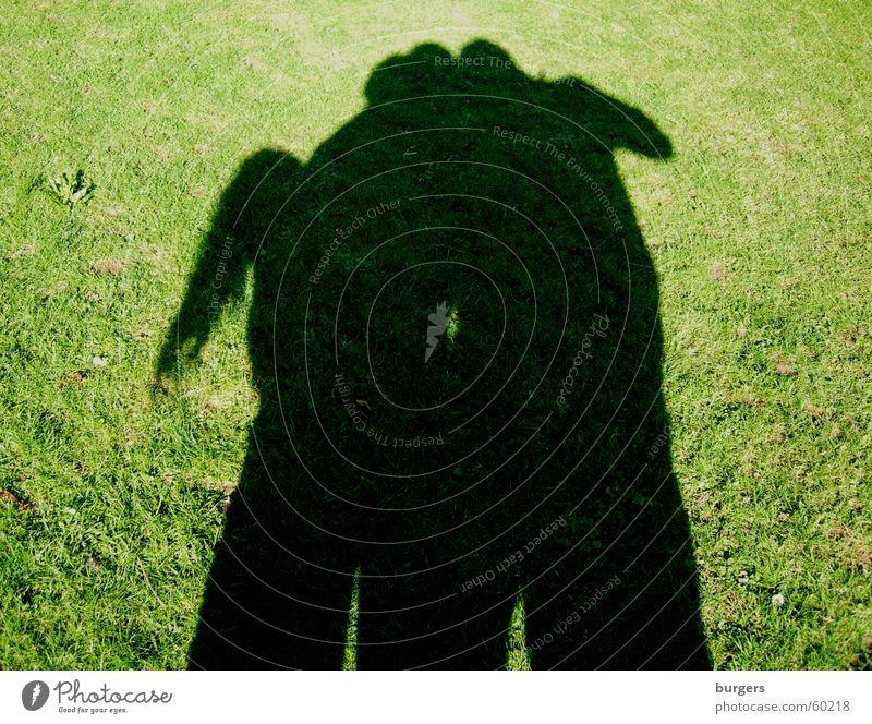 Pferd? Kamel? Fabelwesen Gras grün Abendsonne Schattenreiter Spielen Schattenspiel Außenaufnahme Mensch Rasen Fantasygeschichte schattengestalt Freude Versuch