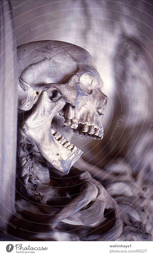 Grabskulptur, Stalieno, Genua Italien Friedhof Skelett Schädel Ligurien Grabschmuck Staglieno