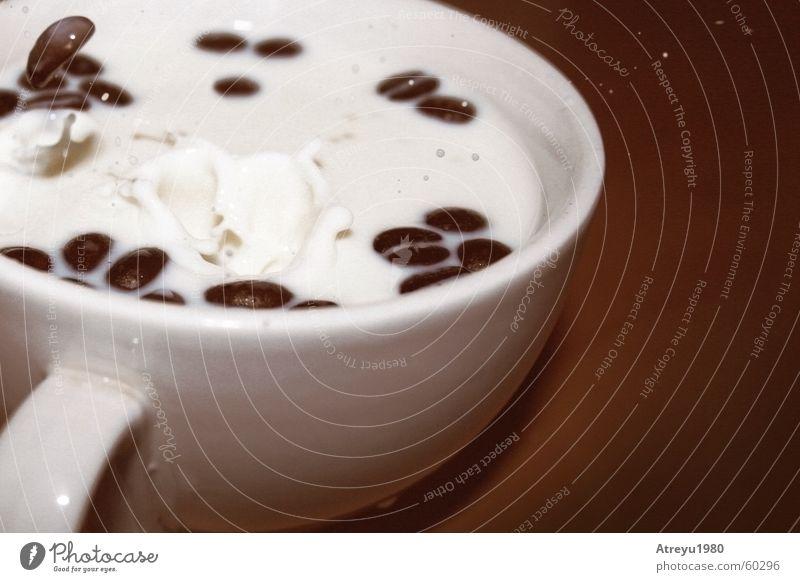 """""""Milchkaffee"""" II weiß braun Wassertropfen Kaffee Pause Café Tasse Holzbrett stagnierend Bohnen Kaffeebohnen Kurzzeitbelichtung"""