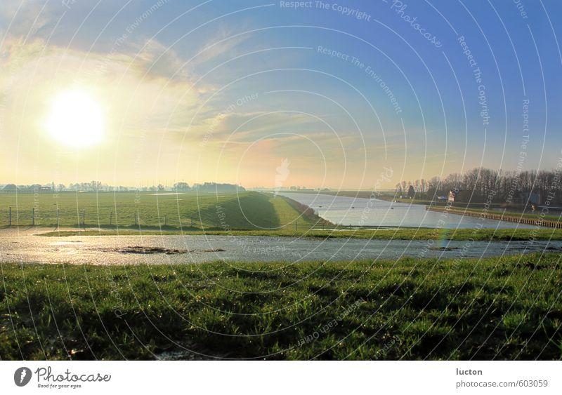 Polderlandschaft Umwelt Natur Landschaft Erde Wasser Himmel Horizont Winter Schönes Wetter Gras Küste Nordsee Deich Erholung blau gelb grün Stimmung