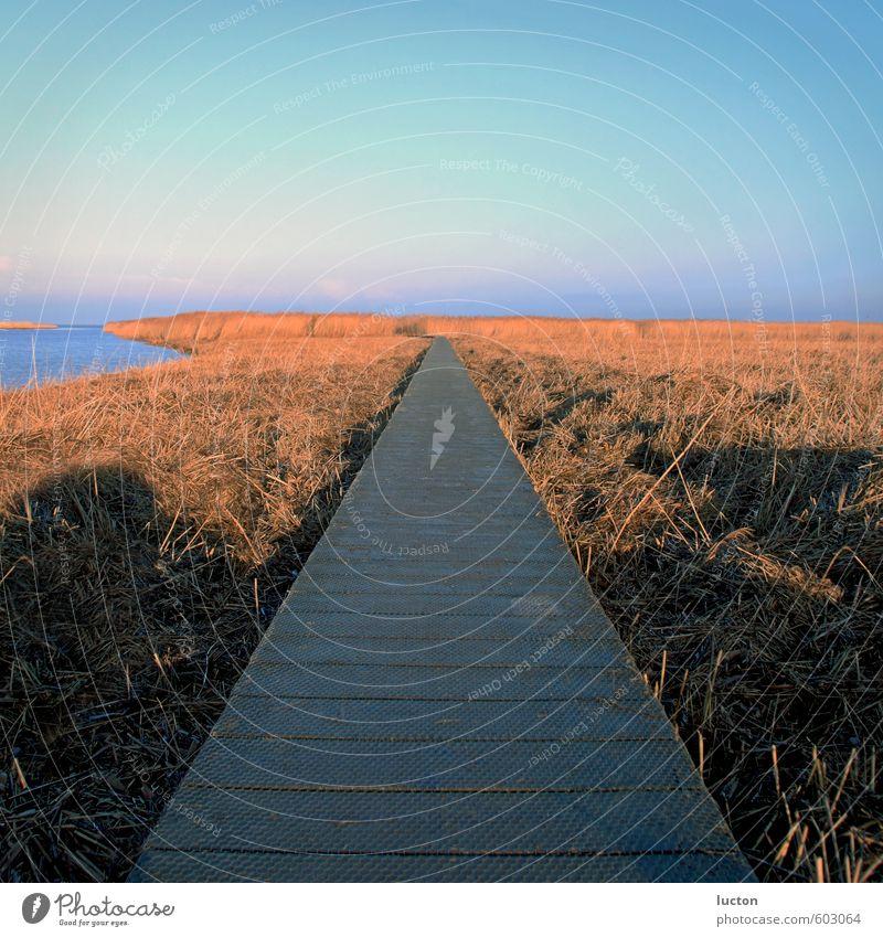 Meersteg Himmel Natur Ferien & Urlaub & Reisen blau Wasser Sonne Erholung rot Landschaft Winter gelb Umwelt Wege & Pfade Küste grau