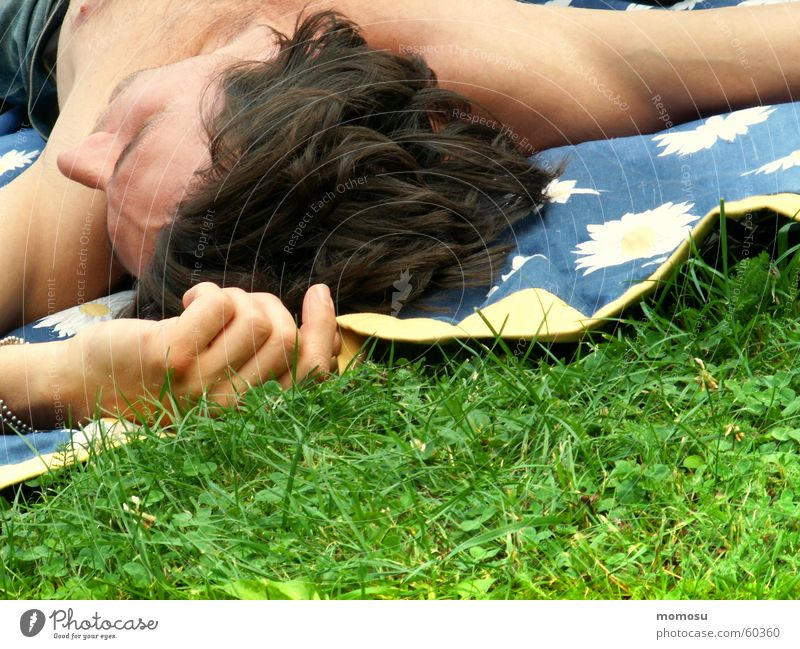 summerfeeling Wiese Gras Mann Hand Finger Oberkörper maskulin Frühling genießen Picknick Decke Kopf Haare & Frisuren spmmer liegen Erholung