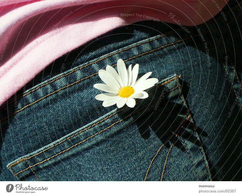 spring everywhere Sommer Frühling Jeanshose T-Shirt Hosentasche
