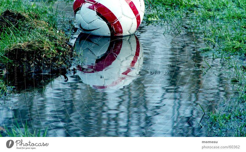 ...ins Wasser gefallen Gras Reflexion & Spiegelung Ball Wasserspiegelung Pfütze matschig Fußball 1 Menschenleer Außenaufnahme Farbfoto nass