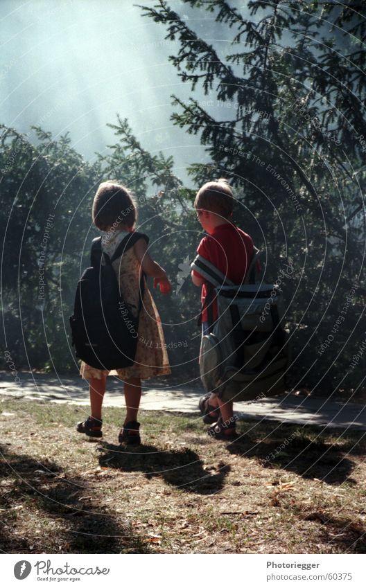 ...wie im Märchen... Kind Rucksack 2 Baum Mädchen unterwegs wandern Hänsel und Gretel Nebel schlechtes Wetter verraucht Rasen Junge gebrüder grimm
