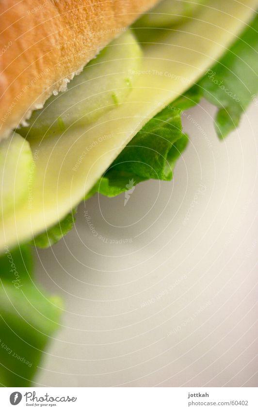 lecker Brot part III grün Ernährung Lebensmittel Brötchen Salat Käse Belegtes Brot Gurke belegen