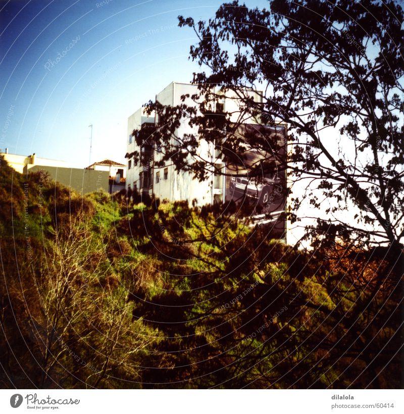window wiew Madrid Lomografie Himmel landscape nature-building c-41 tree sky