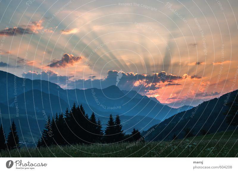 Morgens ist es am Schönsten Himmel Natur Pflanze Sommer Landschaft Wolken Wald Umwelt Berge u. Gebirge Wiese Frühling natürlich Horizont orange leuchten
