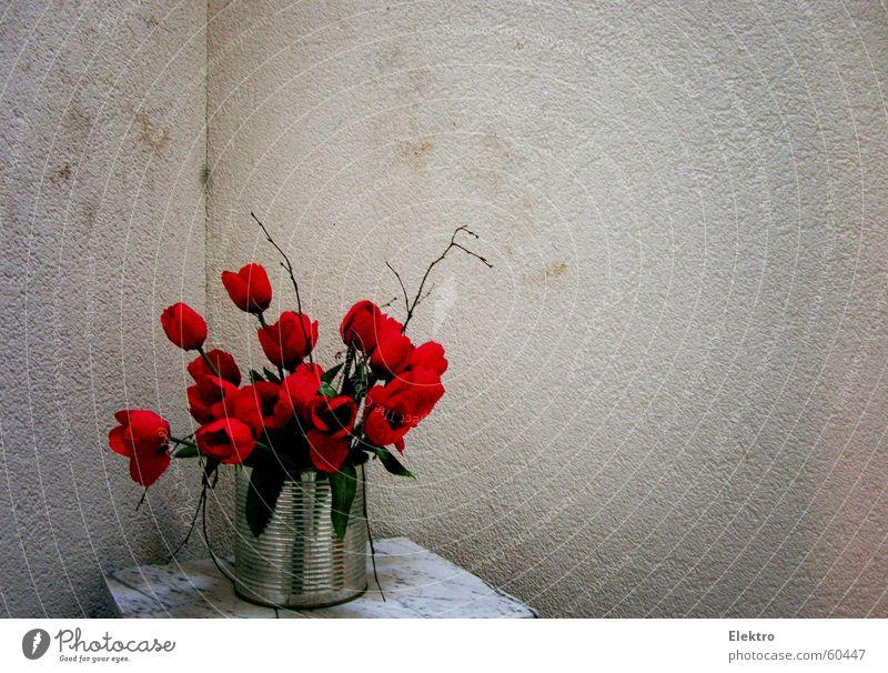 die stille Treppe Tulpe Mohn Blumenstrauß Strauß Marmor Putz Stock Fleck gefleckt Ecke Topf Rose rote Rose Kunst Kunsthandwerk Wohnzimmer Freude gebinde