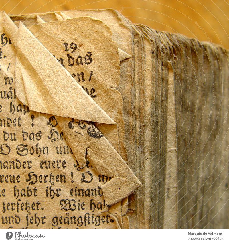 Die exhibitionistische 19 Buch Literatur Papier Bibel Eselsohr Falte verkrüppelt vergilbt staubig dreckig Buchdruck drucken Blatt lesen Typographie